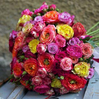 101 розноцветная роза
