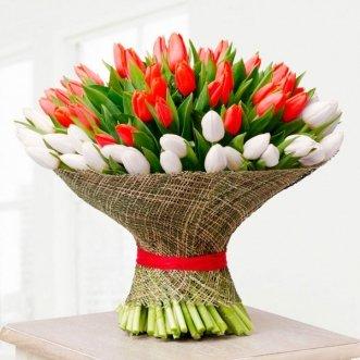 101 красный и белый тюльпан