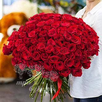 101 красная роза (Premium) 70 см.