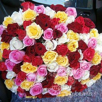 101 разноцветная роза 50 см.