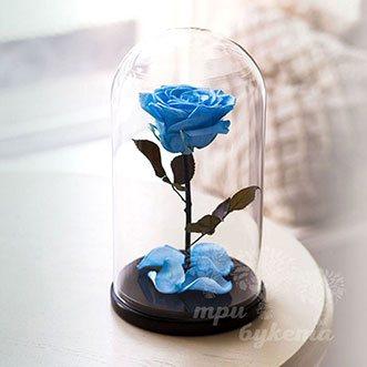 Голубая роза в колбе 26 см