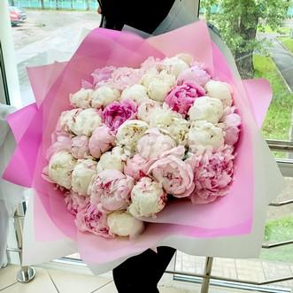 Букет из 39 светло-розовых и белых пионов