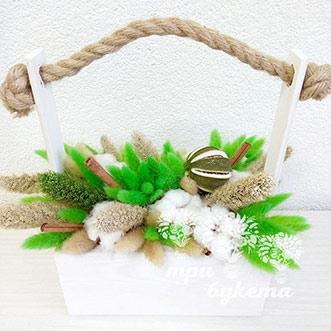 Хлопок и зеленый лагурус в ящике